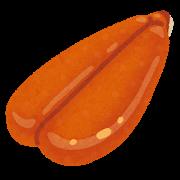 鯔の卵巣はカラスミの原材料